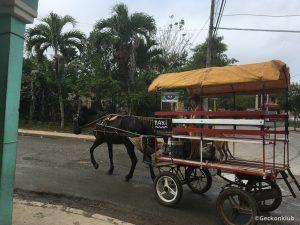 Konske taxi